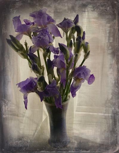 Mom's Iris.jpg